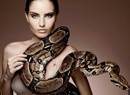 Змеиный яд похудение бедра